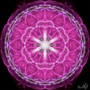 Enlarge Purple spirit Photo