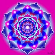 Enlarge Nine petals Photo
