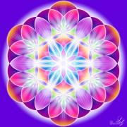 Enlarge Flower of life Photo
