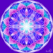 Enlarge Flower of life 2 Photo