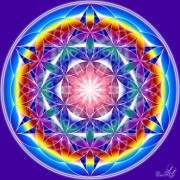 Enlarge Flower of life 3 Photo