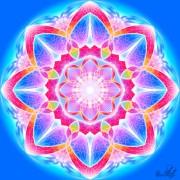 Enlarge Astral lotus Photo