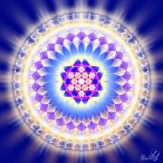 Enlarge Blue Jewel Photo