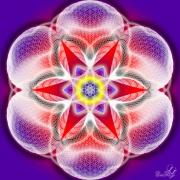 Enlarge Flower of Life Pattern Photo