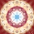 Eight Shine Circles