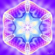 Enlarge Stea Violet Photo