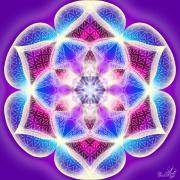Enlarge Magia Violet Photo