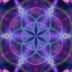 cosmic_15917