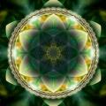 Cosmic 14002