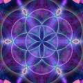 Cosmic 15917