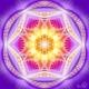 dualitatea_yin_yang