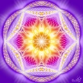 Dualitatea Yin Yang