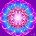 Floare de papadie