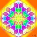 Floarea vietii 6