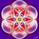 floarea_vietii_tipar