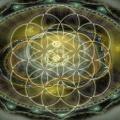 Samanta Universului