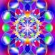 oul_universal_2